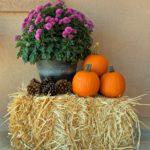 Hello, Albuquerque Fall! :: Five Easy Ways to Make Your Home Feel Cozy