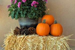 Hello, Fall! :: Five Easy Ways to Make Your Home Feel Cozy from Albuquerque Moms Blog