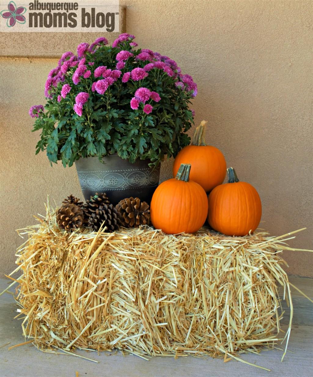 Hello, Albuquerque Fall :: Five Easy Ways to Make Your House Feel Cozy from Albuquerque Moms Blog