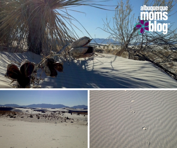 White Sands - ABQ Moms Blog