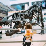 5 Budget-Friendly Family Activities In and Around Albuquerque