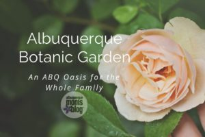 Albuquerque Botanic Garden :: An ABQ Oasis for the Whole Family from Albuquerque Moms Blog