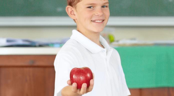 Teacher Appreciation Week :: A Gift Idea
