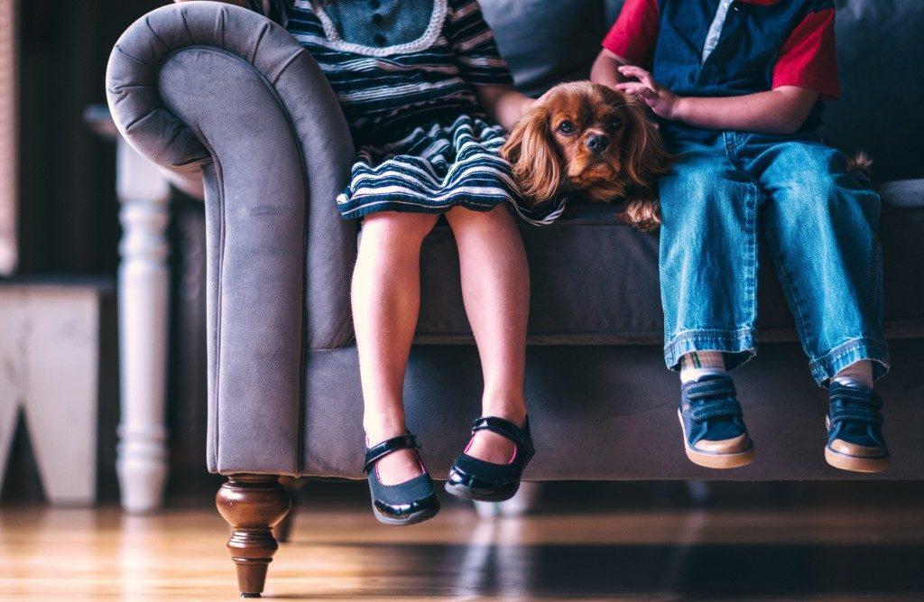 kids dogs | Albuquerque Moms Blog