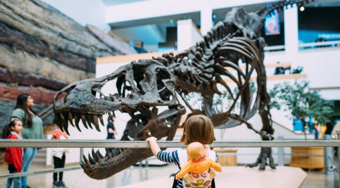 4 Budget-Friendly Family Activities In and Around Albuquerque