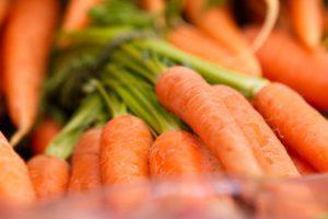 Skarsgard Farms | Albuquerque Moms Blog