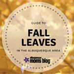 Guide to Fall Leaves in and around Albuquerque