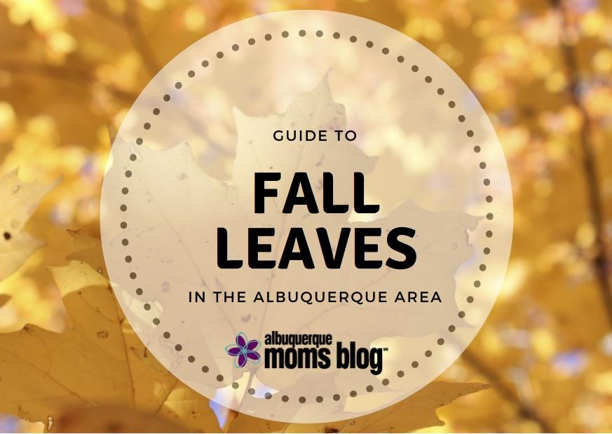 fall leaves | Albuquerque Moms Blog