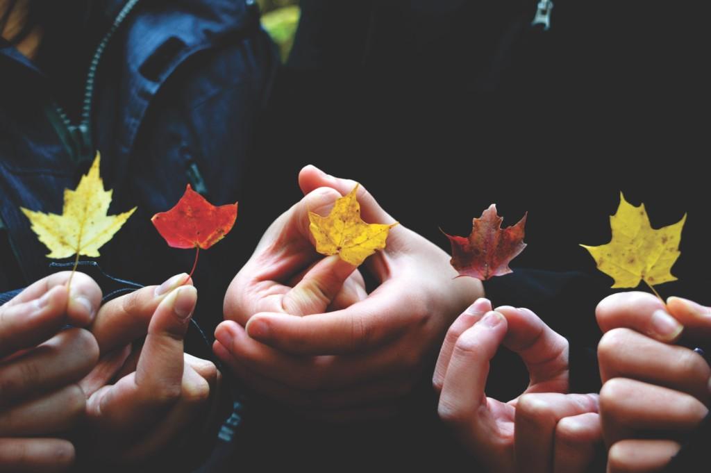 fall-playdates-albuquerque