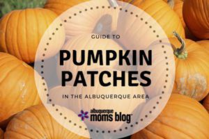 pumpkin patch | Albuquerque Moms Blog