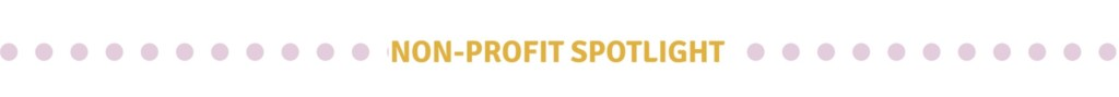 non-profit spotlight