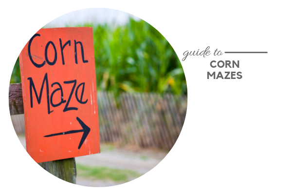 Guide to Corn Mazes