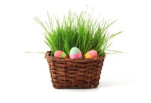 Albuquerque Easter Egg Hunts and Spring Events | Albuquerque Moms Blog