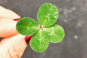 St. Patrick's Day the Irish Way from Albuquerque Moms Blog