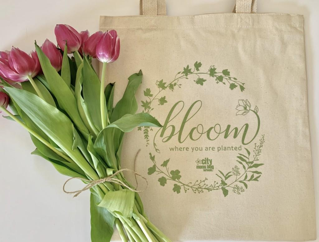 Bloom event, Albuquerque Moms Blog