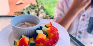 Food and Fun in the Sun: Healthy Snacks for Kids This Summer