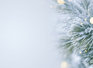 ABQ Mom Holiday Wish List (Local Edition)