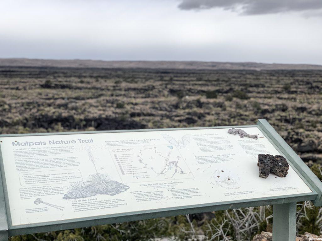 Rv'ing NM Albuquerque Moms Blog