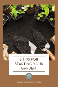6 Tips for Starting Your Garden