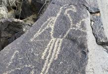 Exploring Boca Negra Canyon: A Family Friendly Trail